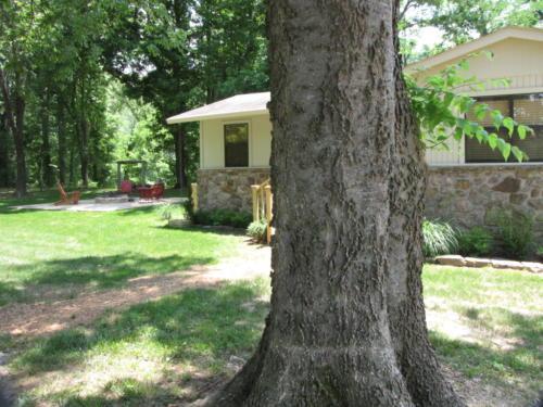 Rivers Edge Cabin 51
